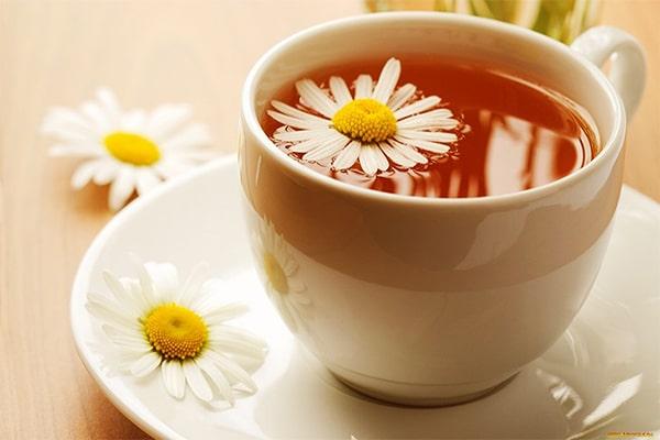Top 10 trà hoa cúc tốt nhất hiện nay 2021